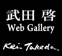 武田啓 Kei Takeda オンラインギャラリー